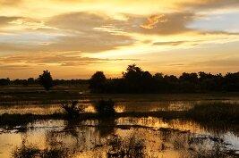 Los paisajes encantadores de Battambang al ponerse el sol