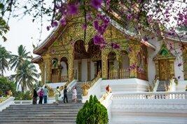 Explore los numerosos templos budistas de Luang Prabang